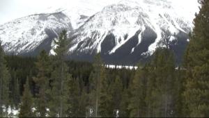 Snowshoeing Kananaskis - Mtn scene